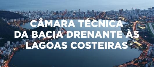 CÂMARA TÉCNICA  DA BACIA DRENANTE ÀS  LAGOAS COSTEIRAS