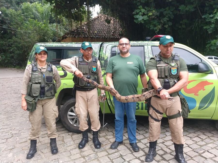 Agentes ambientais resgatam jiboia que estava próxima à estação BRT Boiúna na Taquara