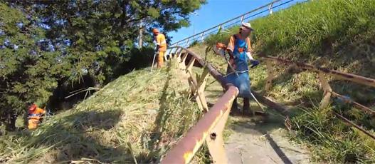 Comlurb promove grande operação de roçada e limpeza na Avenida Brasil, altura de Campo Grande