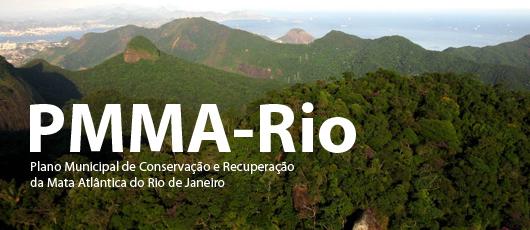 PMMA-Rio