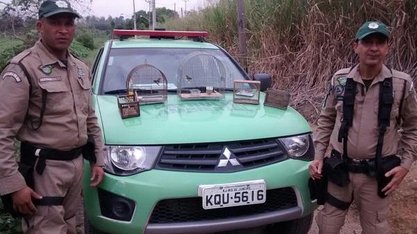 Patrulha Ambiental resgata pássaros silvestres em Campo Grande
