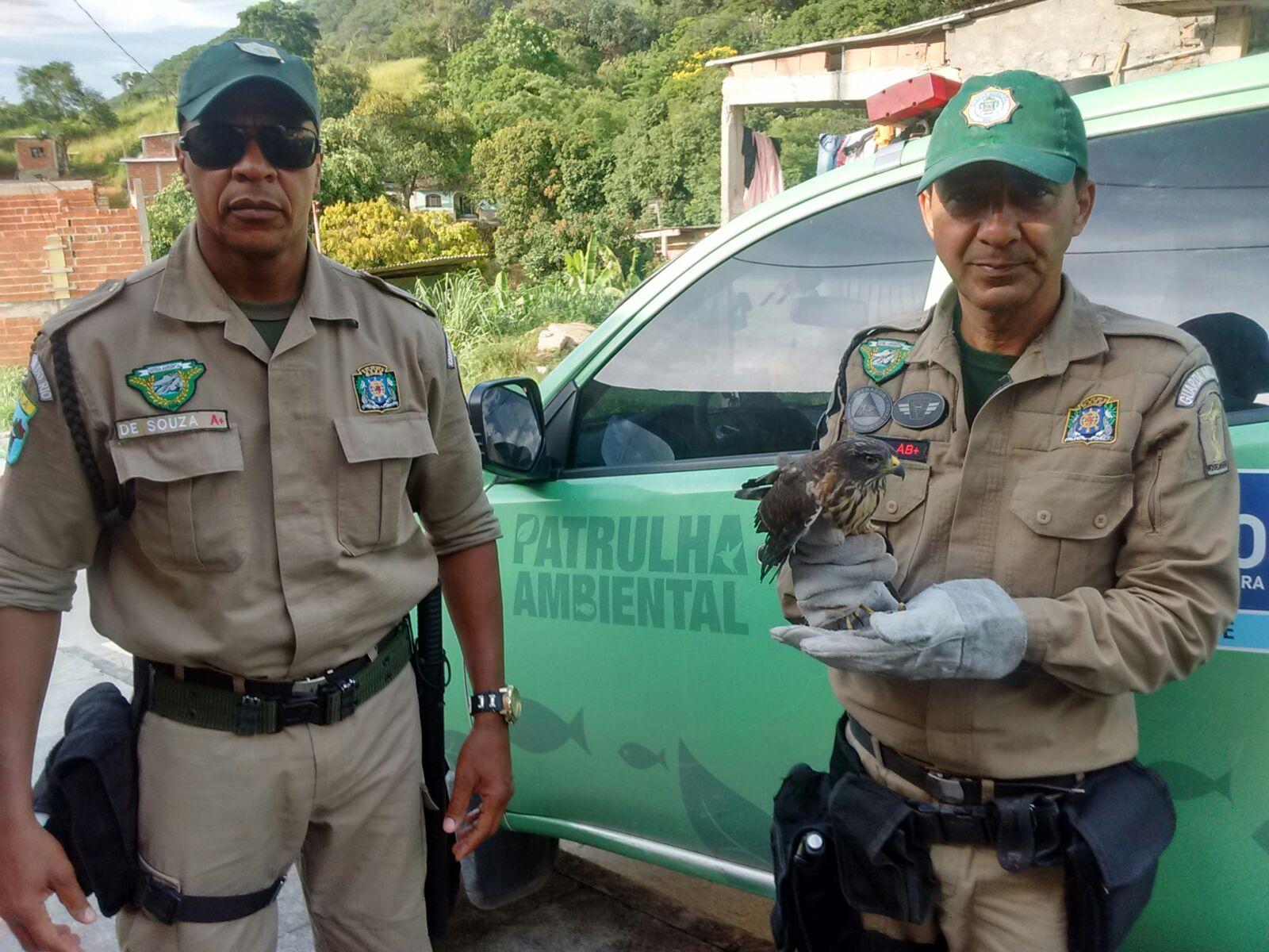 Patrulha Ambiental resgata animais silvestres na Zona Oeste
