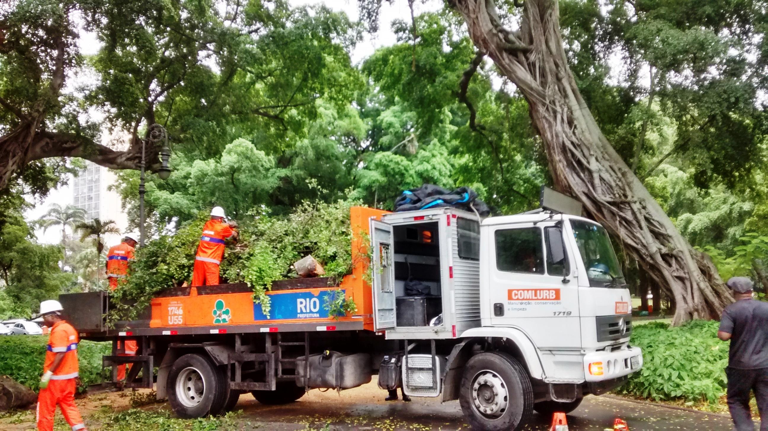 <strong>Árvores do Campo de Santana são podadas pela Comlurb</strong>
