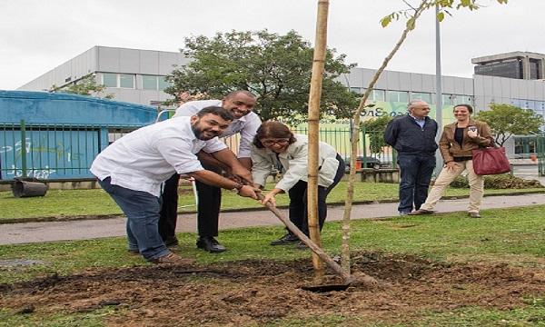<Strong>Fundação Parques e Jardins realiza plantio de 106 árvores no Estácio</Strong>
