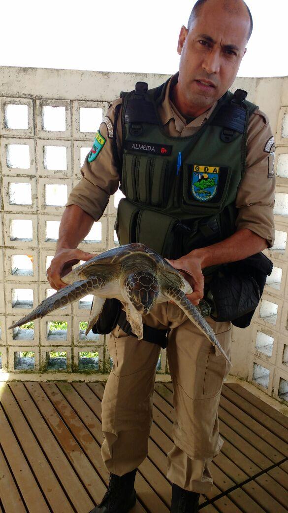 Prefeitura resgata quatro tartarugas  marinhas em três dias na Zona Oeste