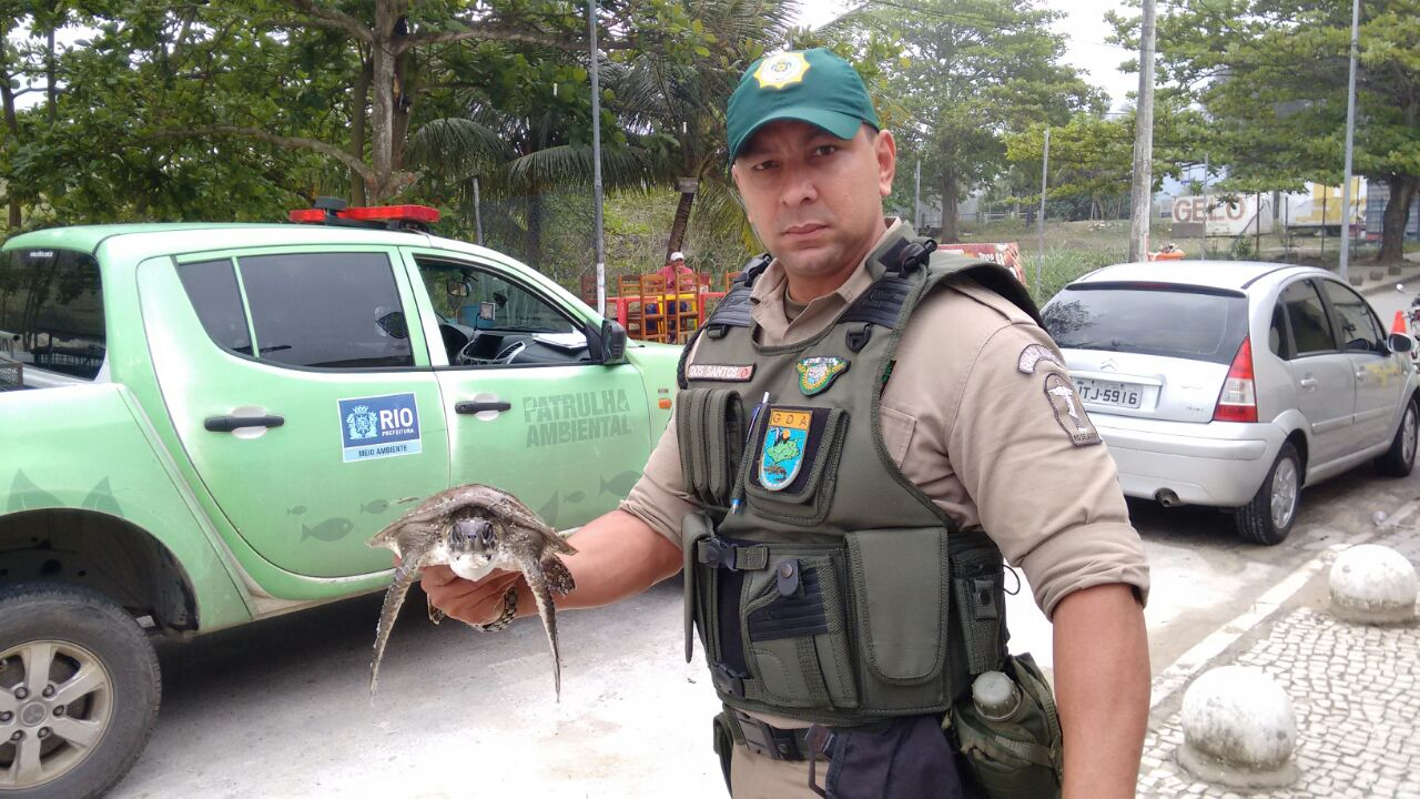 Patrulha Ambiental resgata tartaruga marinha no Recreio