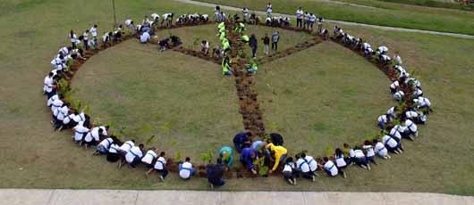 Prefeitura inicia plantio da Floresta dos Atletas no Parque Radical de Deodoro