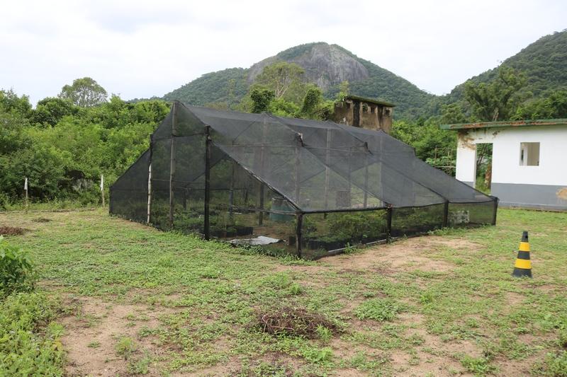 <Strong>Em parceria com FPJ, Ecomuseu Ilha Grande reabre ao público</Strong>