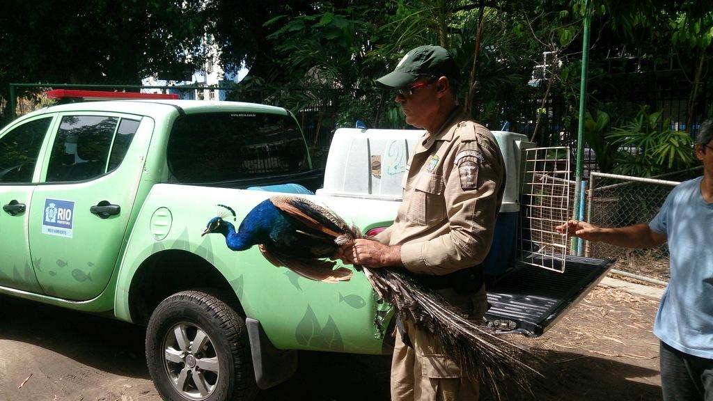 Patrulha Ambiental está cada vez mais presente no Campo de Santana