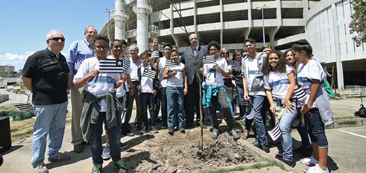 Parceria da Prefeitura com o Botafogo garante plantio de 160 árvores no Complexo Nilton Santos