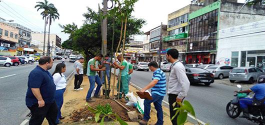 Fundação Parques e Jardins inicia plantio de árvores na Estrada do Galeão