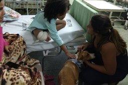 Cães ajudam na recuperação de crianças e adolescentes em hospital na Ilha