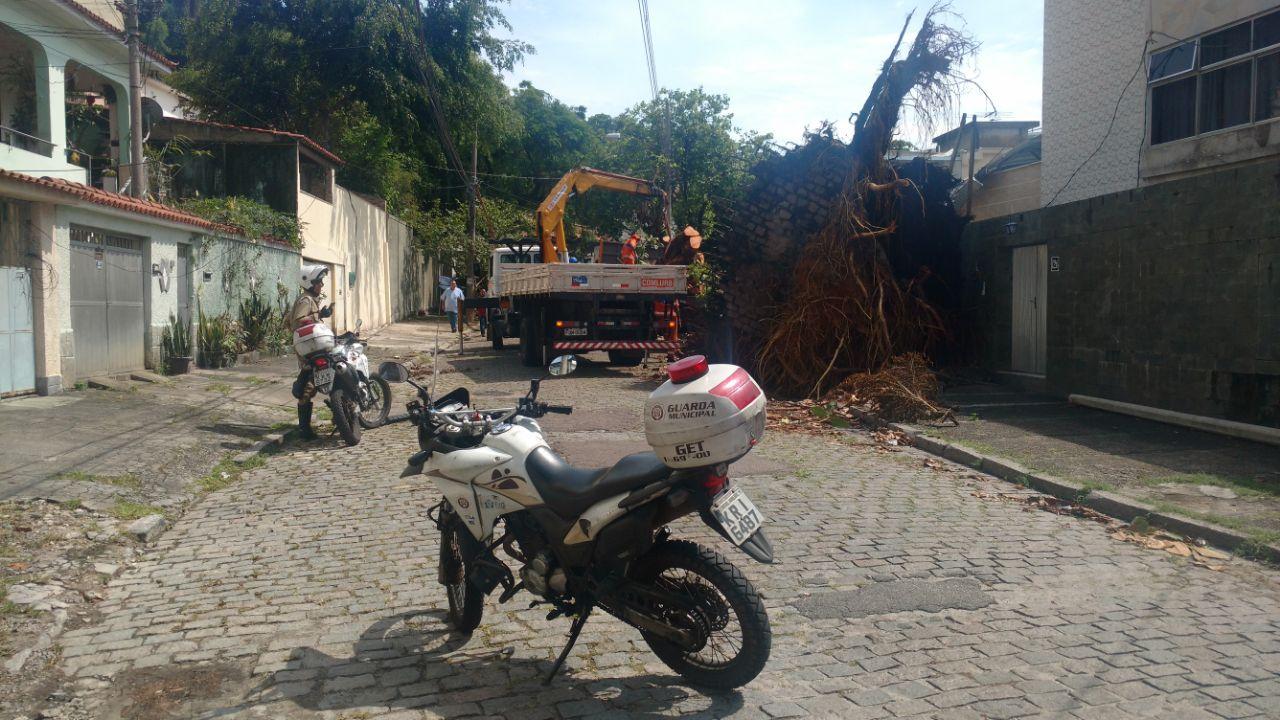 GM-Rio apoia ações da prefeitura para minimizar impactos das chuvas