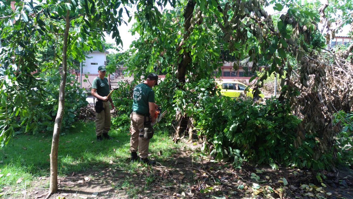 Guarda Municipal apoia ações da Prefeitura para minimizar impactos das chuvas