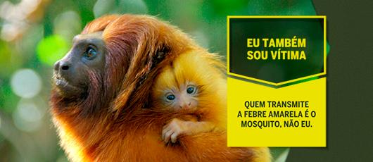 Banner nova campanha da febre amarela