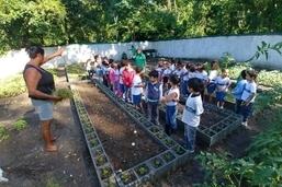 Alunos de P. de Guaratiba aprendem sobre educação alimentar com horta na escola