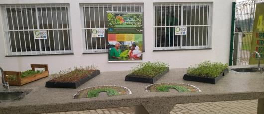 Seconserma inaugura o primeiro Centro Municipal de Agroecologia e produção orgânica do País