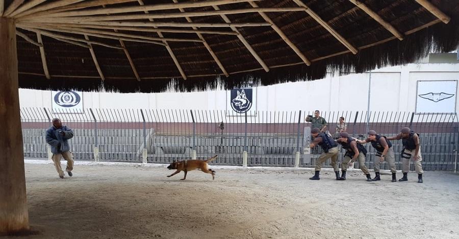 Canil recebe alunos do Curso de Adestramento de Cães da Marinha