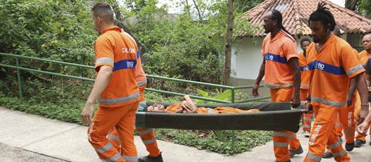 Garis da Comlurb fazem treinamento com técnicos da Defesa Civil para prática de arborismo