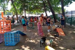 Praça do Lido ganha Parcão, área de diversão para cães