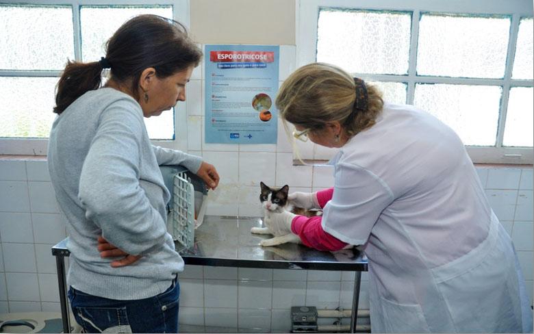 Prefeitura amplia em 100% atendimentos a animais nas unidades de zoonoses da Vigilância Sanitária